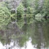 Listing Image 52987
