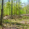 5 ACRES BORDERING STATE LAND