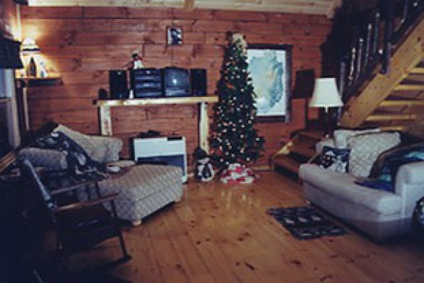 The livingroom during the holidays