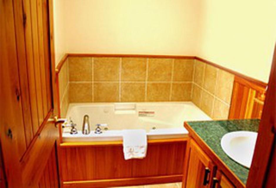 Bath with Jacuzzi tub