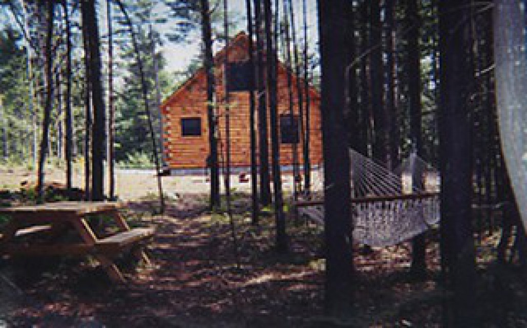 The backyard with hammock and firepit