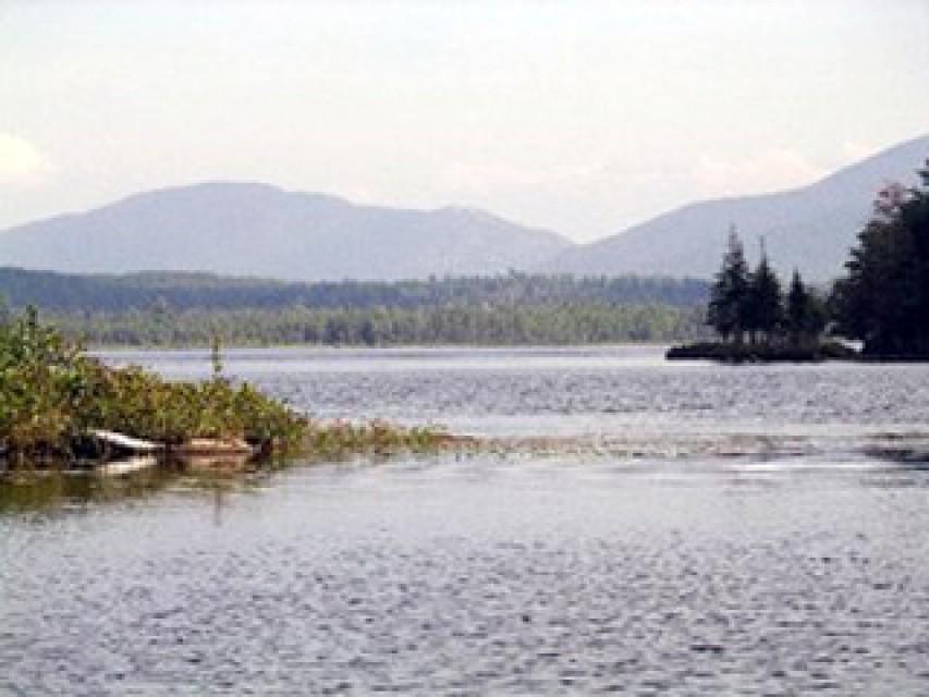 Horseshoe Pond Merging into Deer River flow