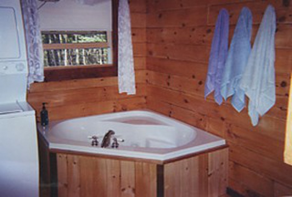 One of two bathrooms with Jacuzzi and washer/dryer
