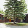 Gulf Brook Lodge