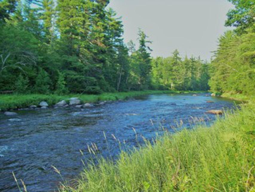 Downstream riverfront view