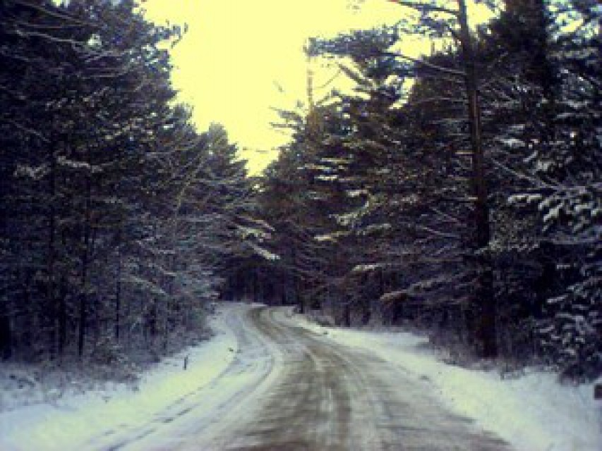 Beautiful winter seclusion with plowed roads