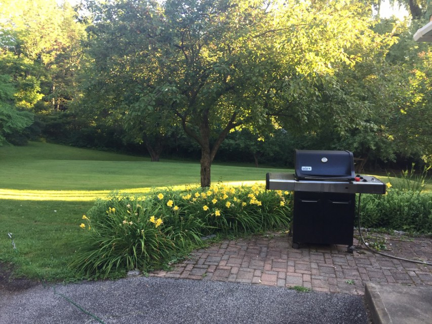 Backyard BBQ with picnic table an expansive yard