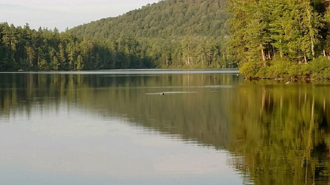 Loon Lake (0.2 mile walk from cabin)
