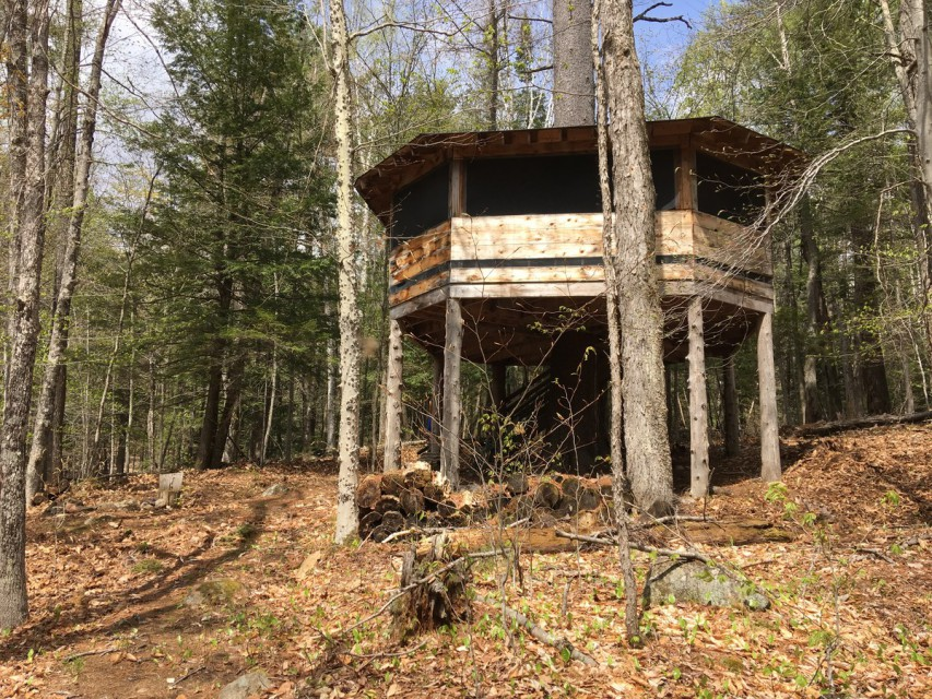 Screened Treehouse - Fun overnight with kids!