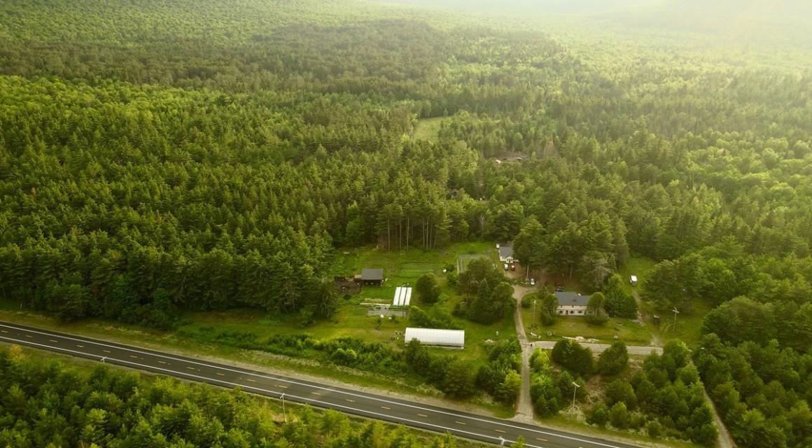 Kate Mountain Farm
