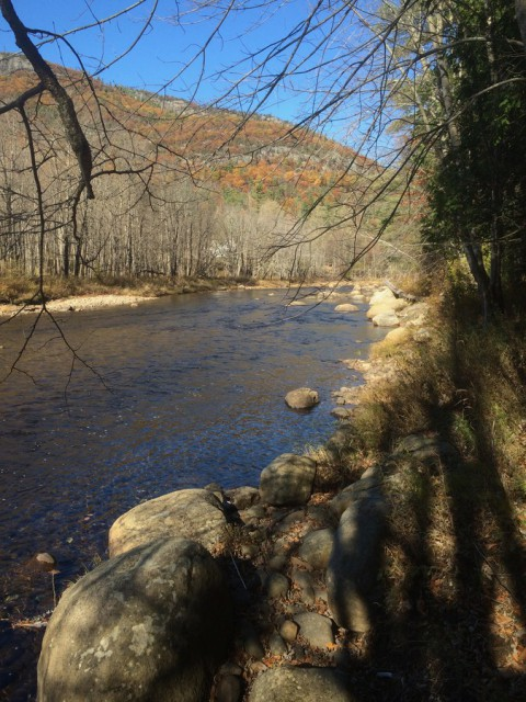 East branch of the Ausable River on our property