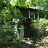 A DREAM OF A  WOODLAND HOUSE