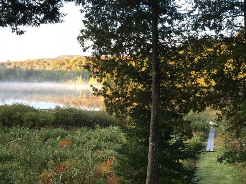 Boardwalk to the pond