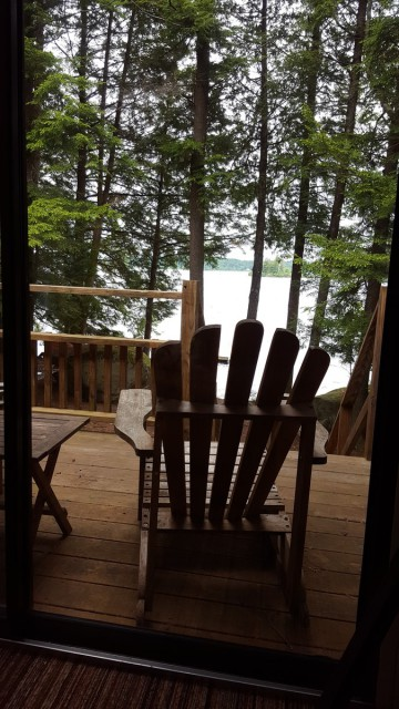 View from the Screened Porch
