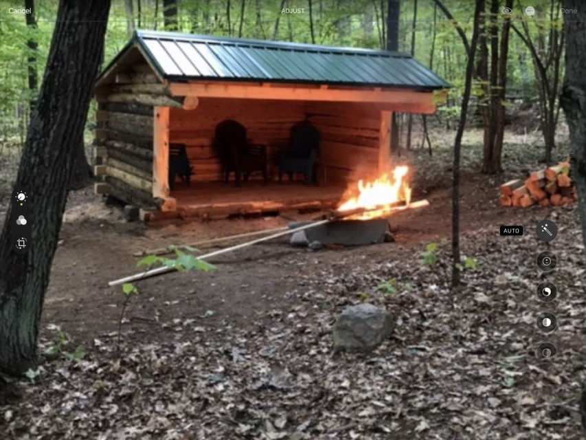 Lean-to in back yard