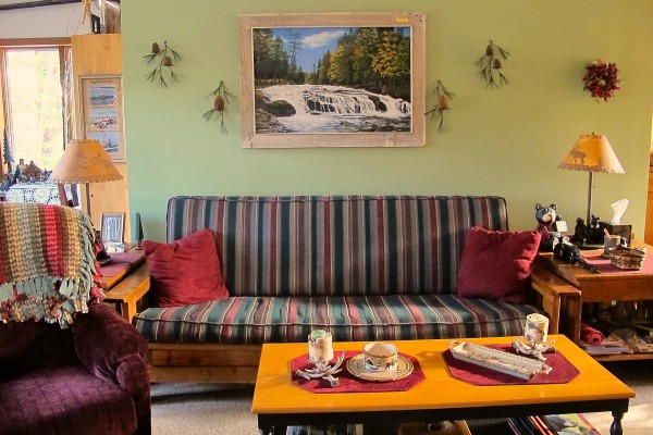 Living room -not a sleep sofa