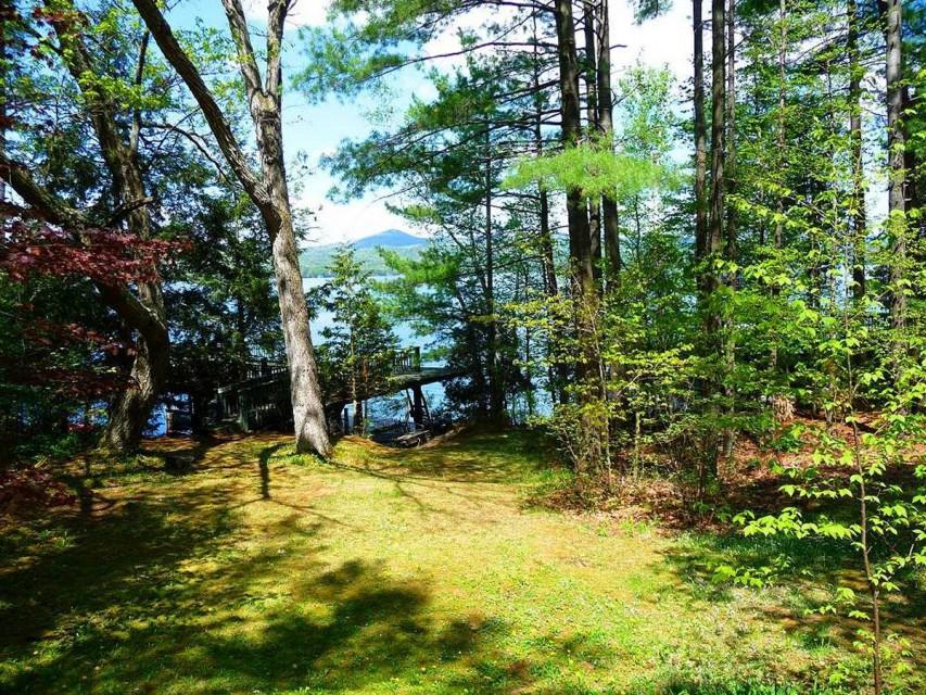 Looking toward lake from front yard