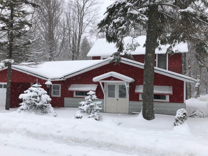 Porky Pine Winter Season 2020