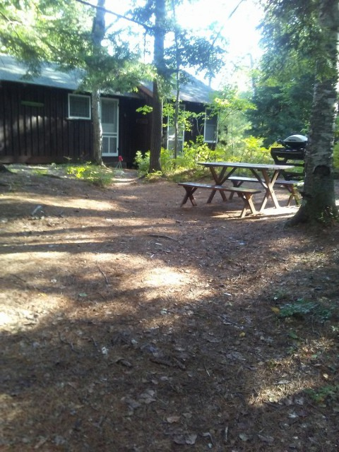 Sunlight on the Apartment, grill and picnic table