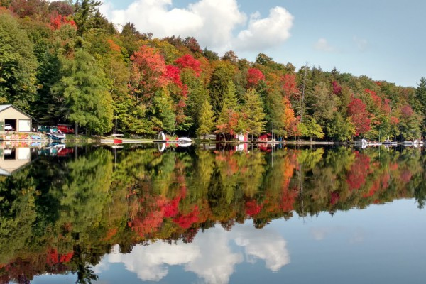 View the beautiful colors of the season from the cabin!