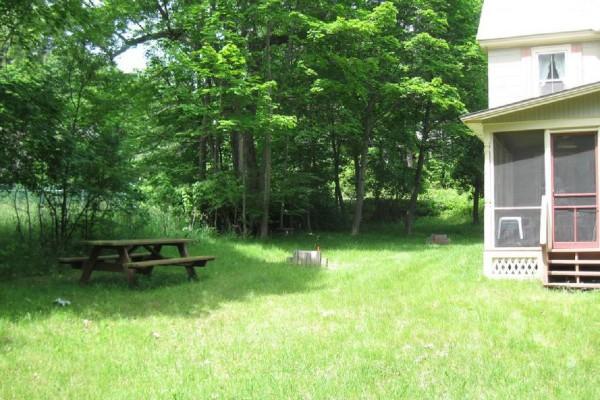 Picnic table, horse shoe pit, back porch