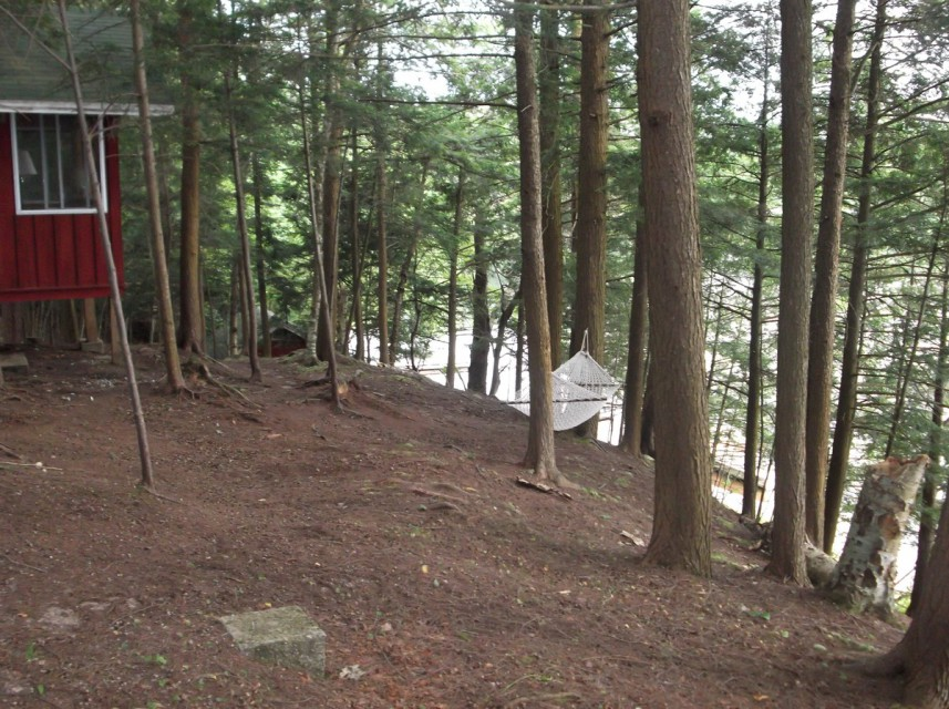 Path to beach: in front of cabin, then behind boathouse