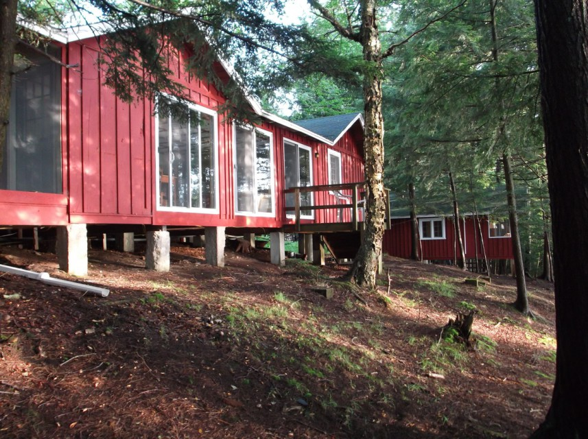 Lake side of cabin, top of bank