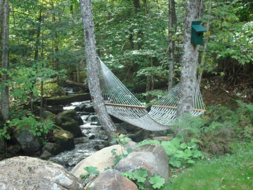 Hammock next to our stream.