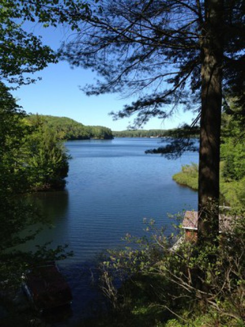 Overlooking White Lake and the Property