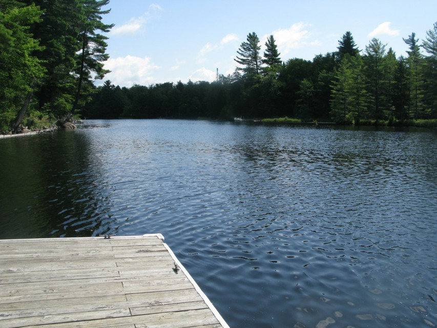 View from the Public Dock
