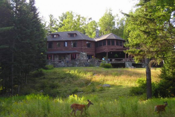 Deer and house from the lake