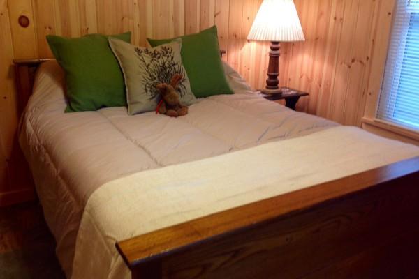 Back bedroom; full-size bed