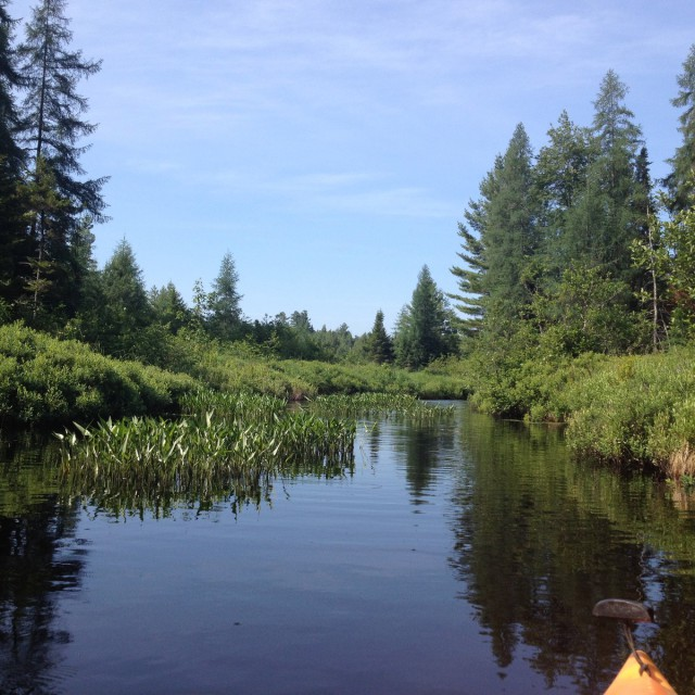 Lake Outlet from a Kayak trip