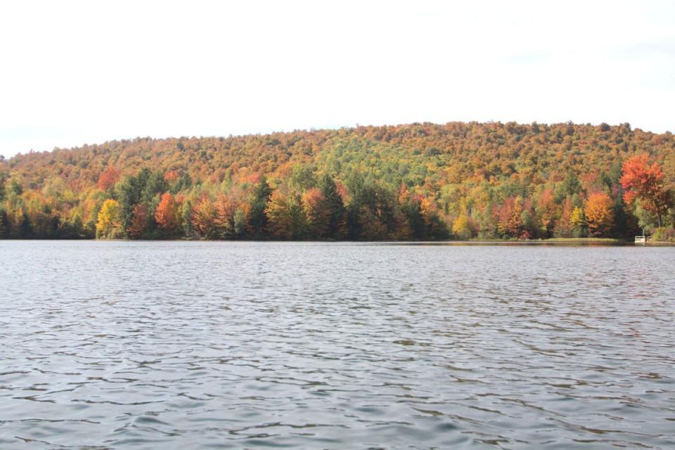 Fall peak foliage!