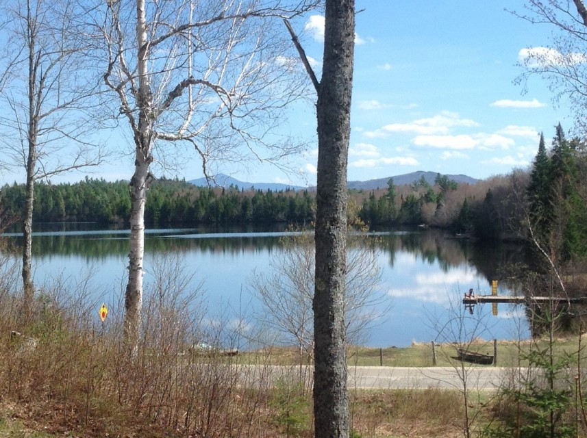 Access Loon Lake