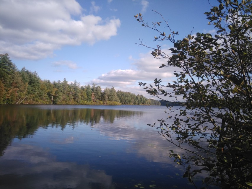 Loon Lake, views you can expect!