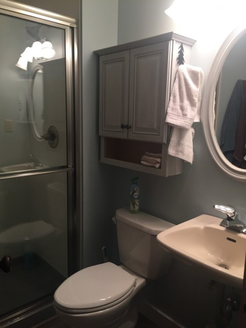 Large stall shower bathroom