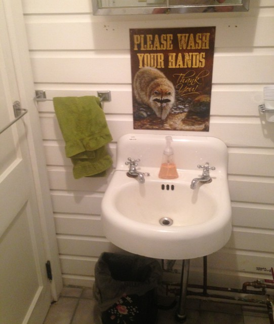 Bath:  Shower, toilet, sink, cute ADK theme.